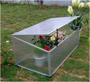 Mini serre greenhouse