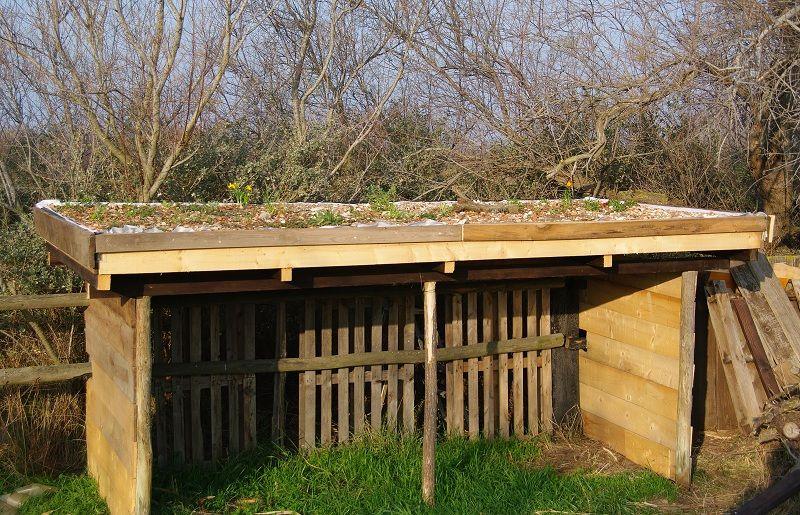 Cabane de jardin toit vegetalise